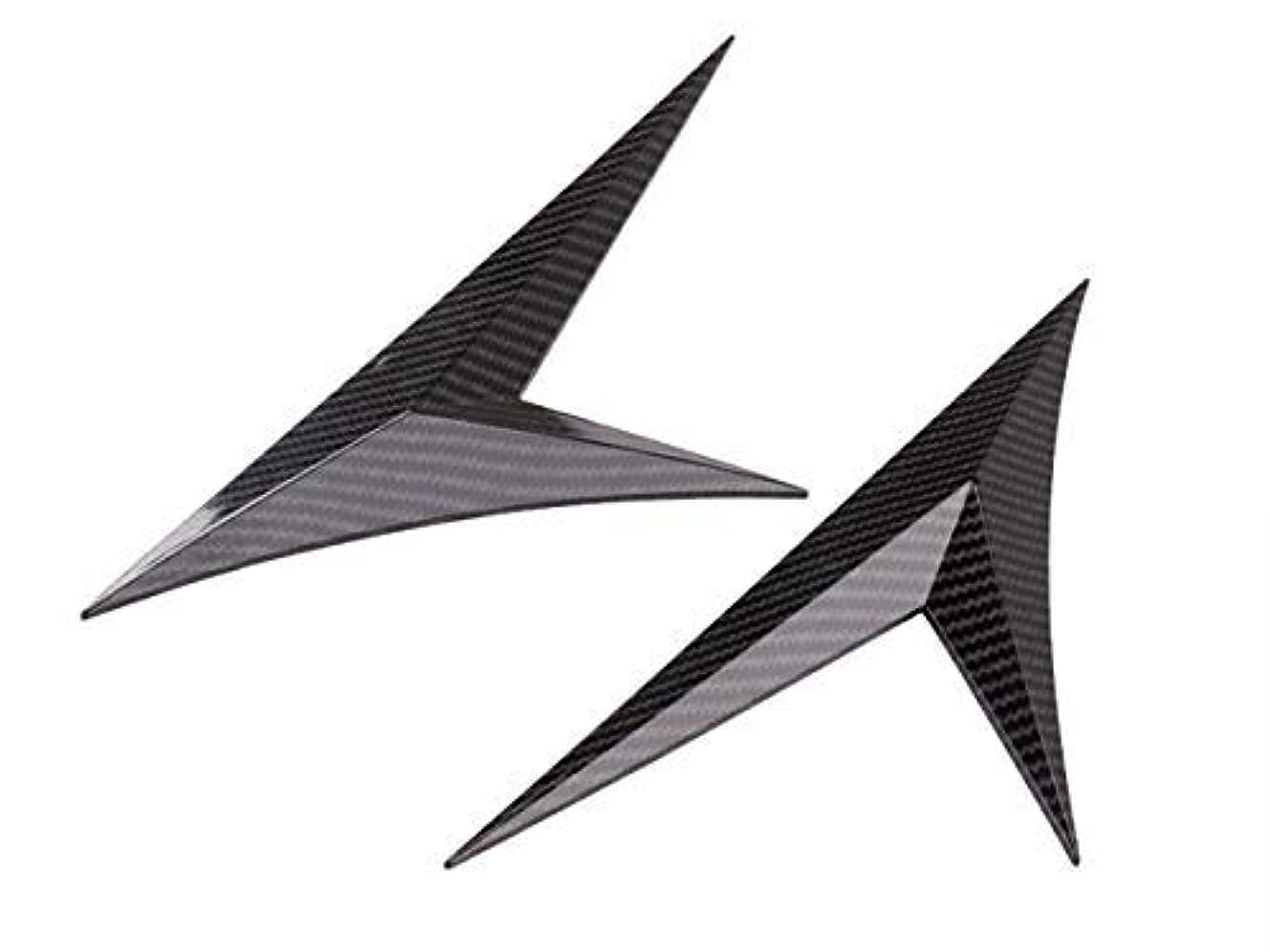 千送信するわずかにシビック 10代目 クォーターパネルガーニッシュ フェンダー アクセサリー 防水 簡単貼り付け 外装パーツ 1P Autozone