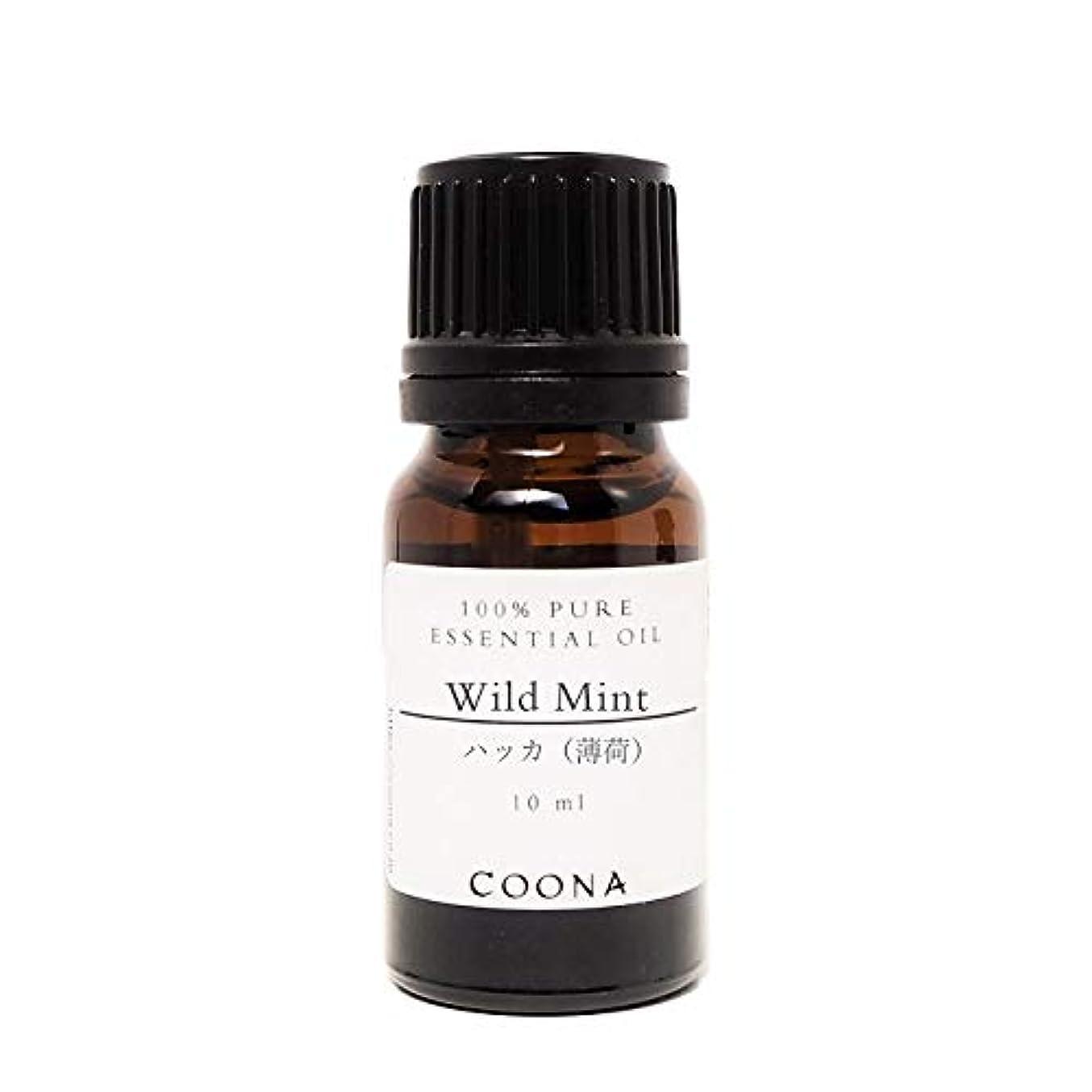 意図する豚肉パッチハッカ (薄荷) 10 ml (COONA エッセンシャルオイル アロマオイル 100%天然植物精油)