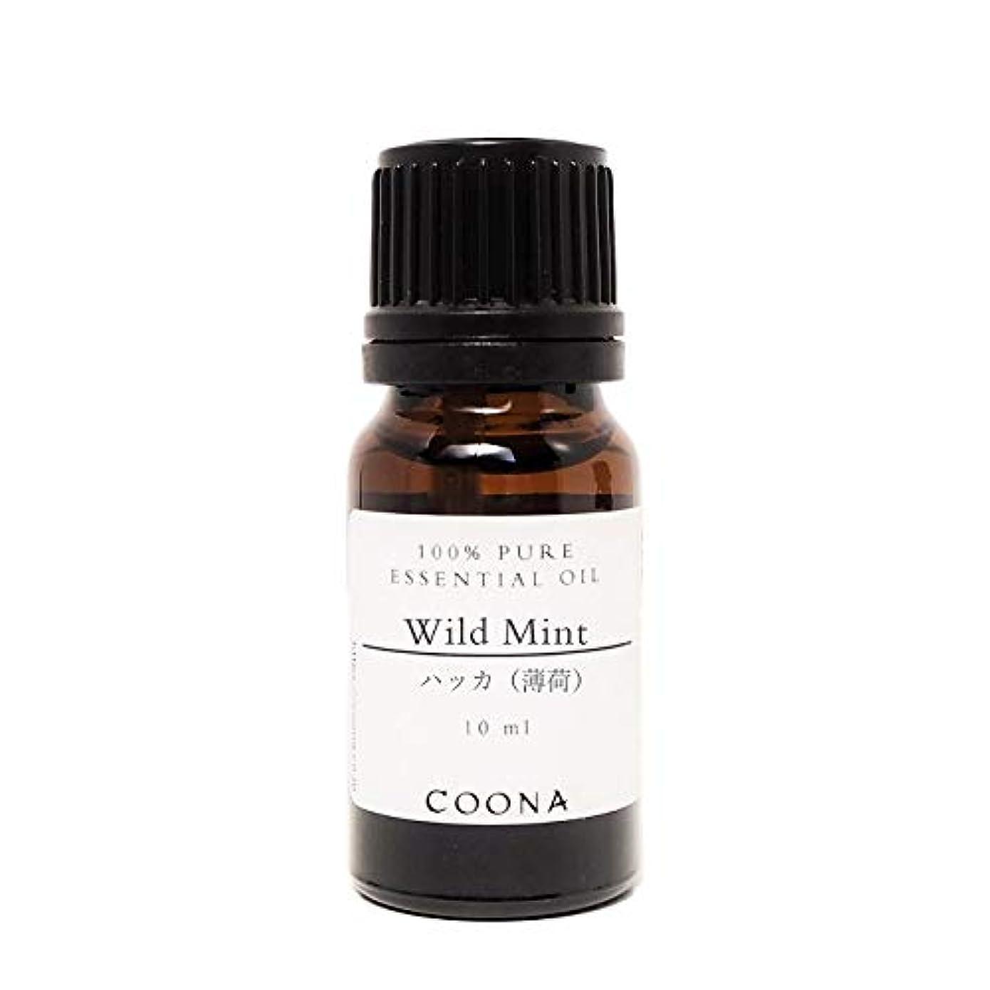 数値喜び屋内でハッカ (薄荷) 10 ml (COONA エッセンシャルオイル アロマオイル 100%天然植物精油)