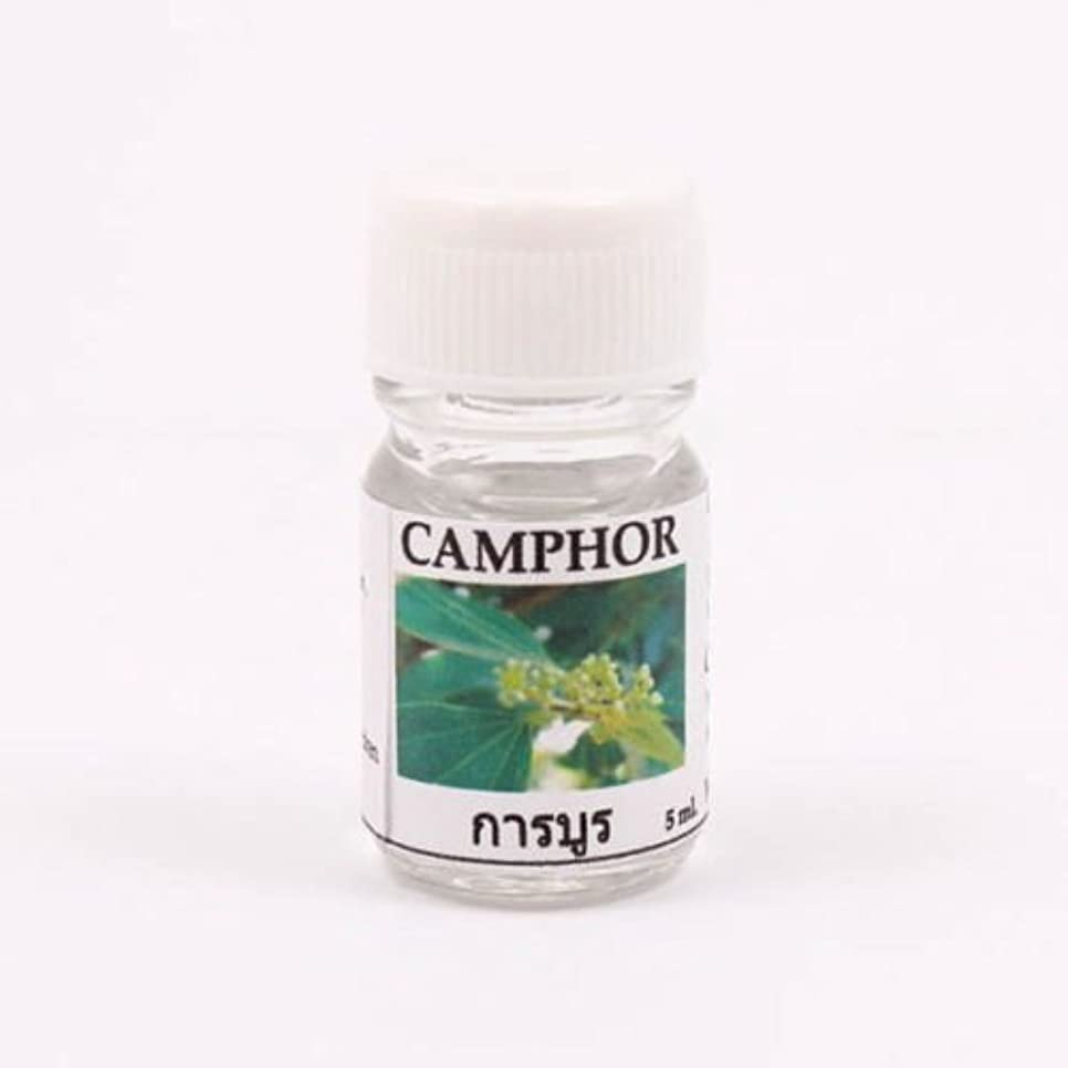 防腐剤ビジター石化する6X Champor Aroma Fragrance Essential Oil 5ML. (cc) Diffuser Burner Therapy