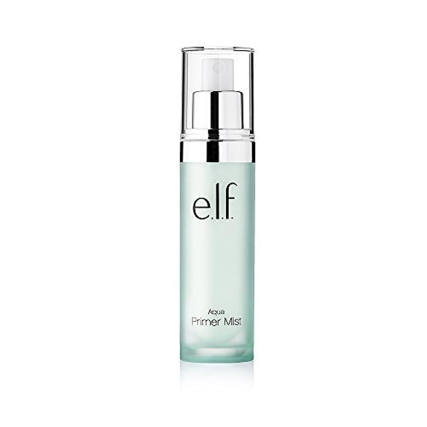 世辞光沢のある放射能(6 Pack) e.l.f. Aqua Beauty Primer Mist (並行輸入品)
