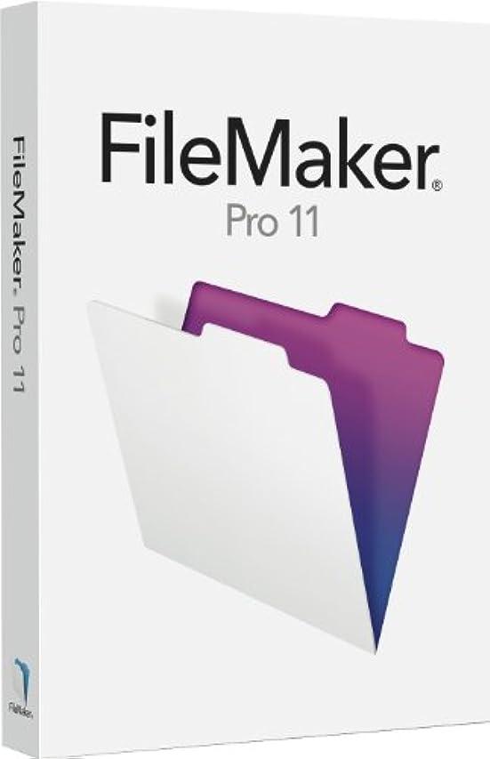 正しくインポートブルーベルFilemaker pro 11 ファイルメーカープロ アップグレード版