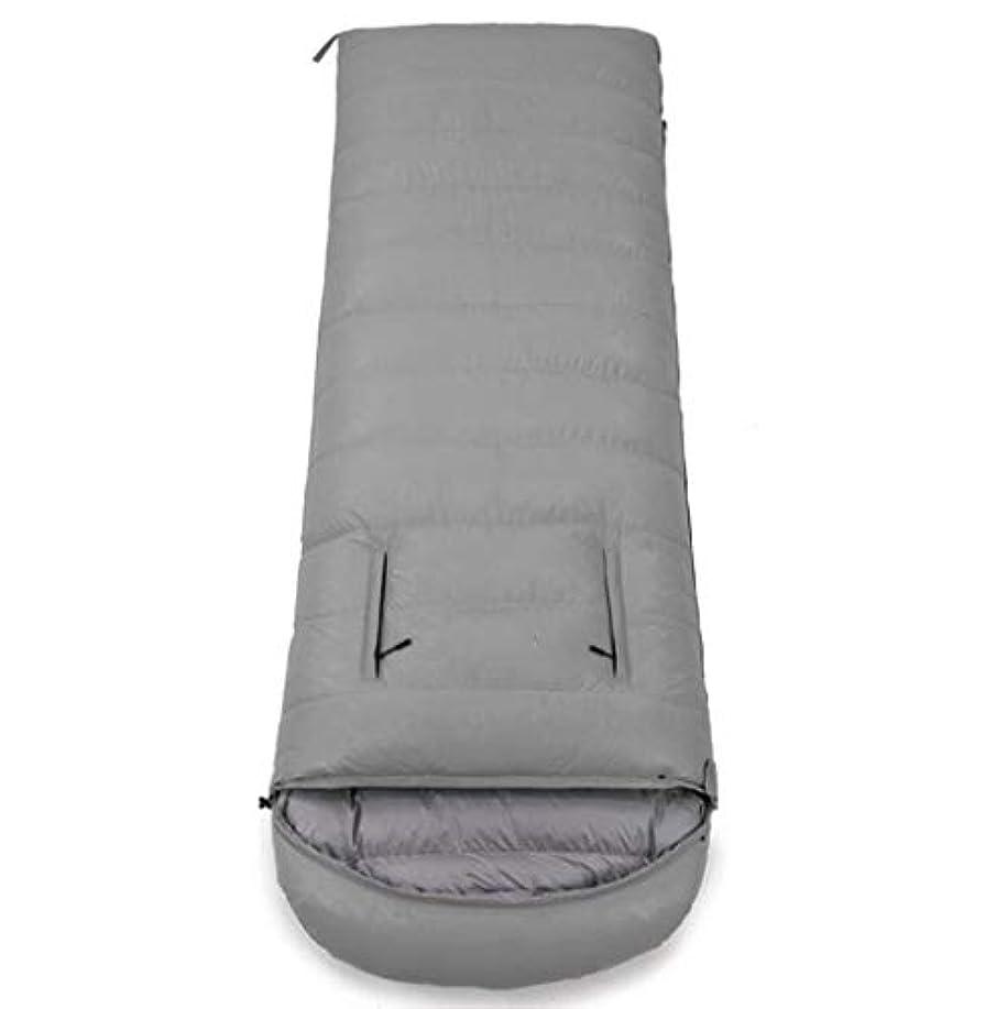 害虫たぶん悔い改める屋外キャンプ用寝袋屋外縫製ダブル寝袋ポータブル圧縮寝袋 (Capacity : 3.0kg, Color : Gray)