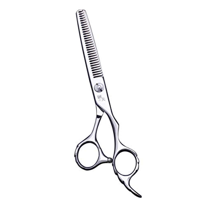 勝利軽量抹消鋼夫シザー 散髪はさみ 6.0インチ ヘアカット すきバサミ すき率20%-30% プロ仕様 高級ステンレス製 カットシザー&セニングシザーセット 美容師 理容師 初心者 家庭用 (V型すきバサミ)