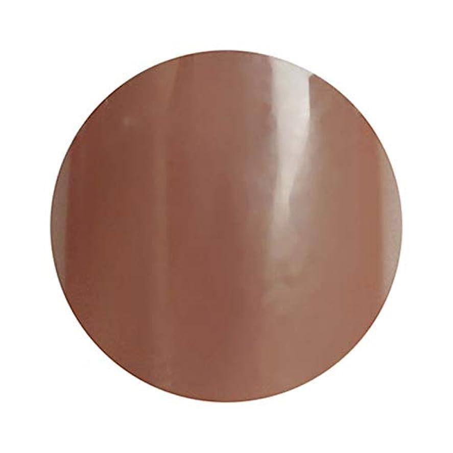 褐色拒絶鉛para gel パラジェル カラージェル S032 リッチウォルナット 4g (久永ひろよプロデュース)