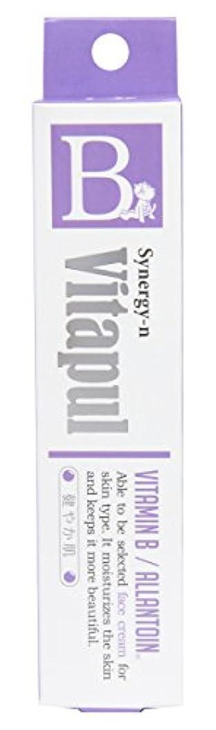 ラインナップ頬六分儀シナジーン ビタプルクリーム(ビタミンB)