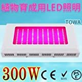 植物育成用LEDライト 水耕栽培ライト  100*3W  野菜工場、植物農園、植物栽培工場などに !!!TOWA