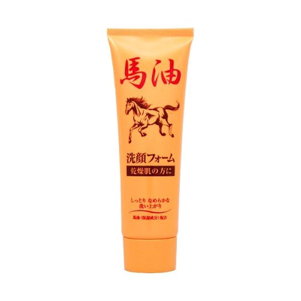 純ケミファ ジュンラブBY洗顔フォーム 120g