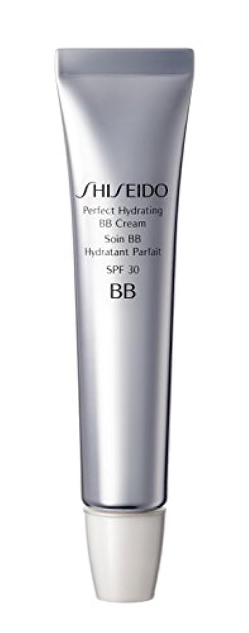 数学者実施する接ぎ木Shiseido - 資生堂パーフェクトBBクリーム乳液?クリーム媒体30ML - 【並行輸入品】
