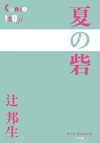 夏の砦 (P+D BOOKS)