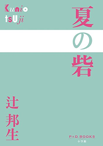 夏の砦 (P+D BOOKS) 辻 邦生