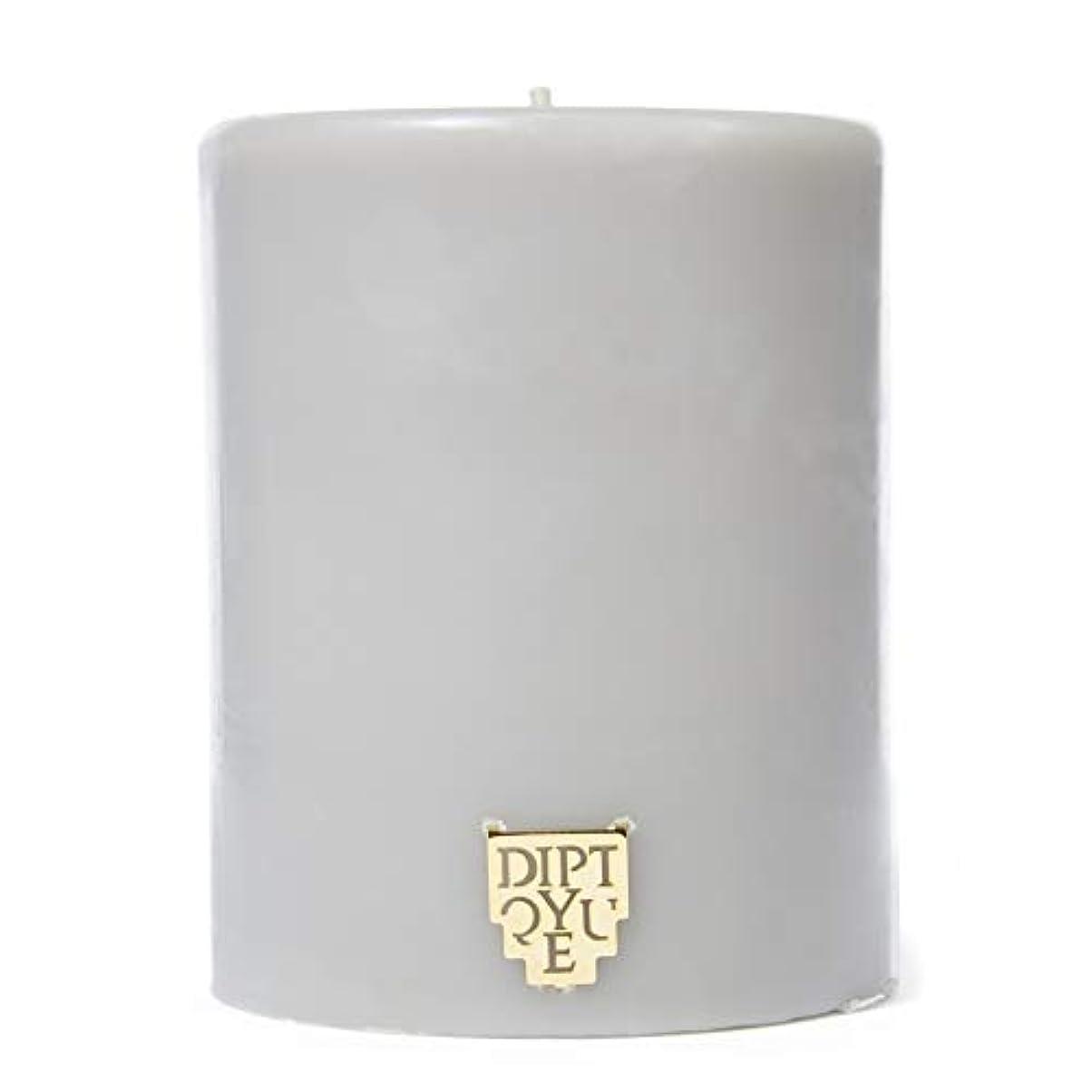 敗北オゾン個人的な[Diptyque] DiptyqueのFeuデボワピラーキャンドル450グラム - Diptyque Feu De Bois Pillar Candle 450g [並行輸入品]
