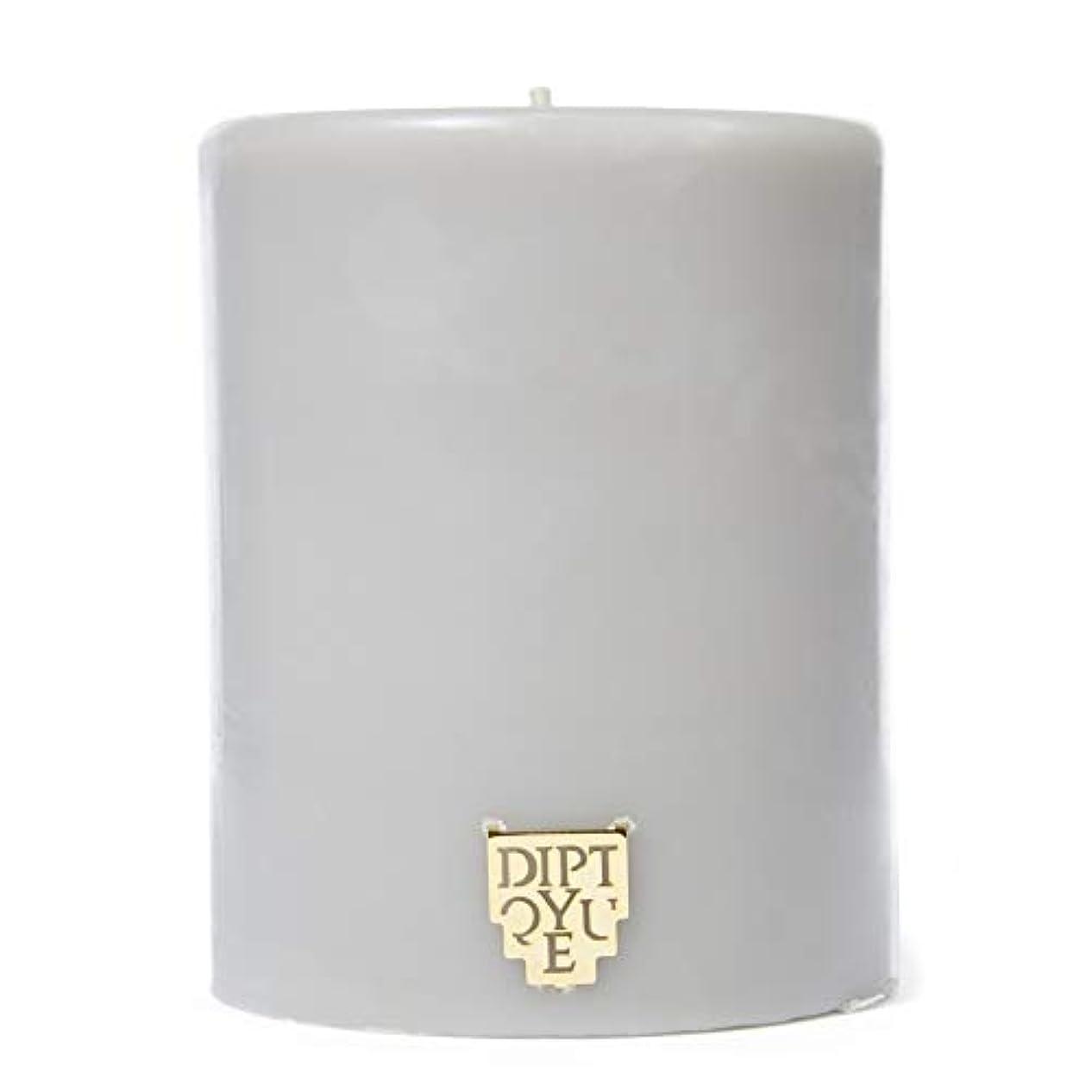 ランチョン敬な素晴らしさ[Diptyque] DiptyqueのFeuデボワピラーキャンドル450グラム - Diptyque Feu De Bois Pillar Candle 450g [並行輸入品]