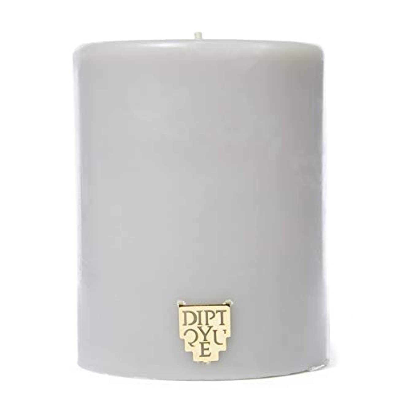 七時半お尻建築家[Diptyque] DiptyqueのFeuデボワピラーキャンドル450グラム - Diptyque Feu De Bois Pillar Candle 450g [並行輸入品]