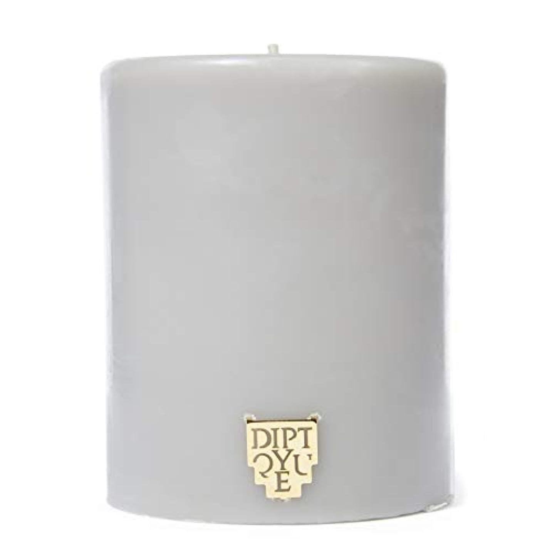 偏差年柔らかい足[Diptyque] DiptyqueのFeuデボワピラーキャンドル450グラム - Diptyque Feu De Bois Pillar Candle 450g [並行輸入品]