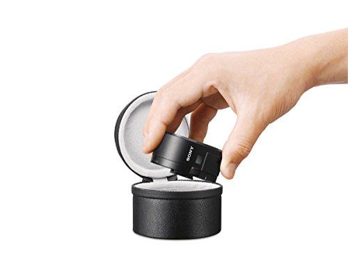 ソニー SONY レンズケース ソフトキャリングケース α用 LCS-BBM