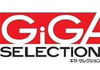 ギガ・セレクション 永磁ホルダ GSANC-513