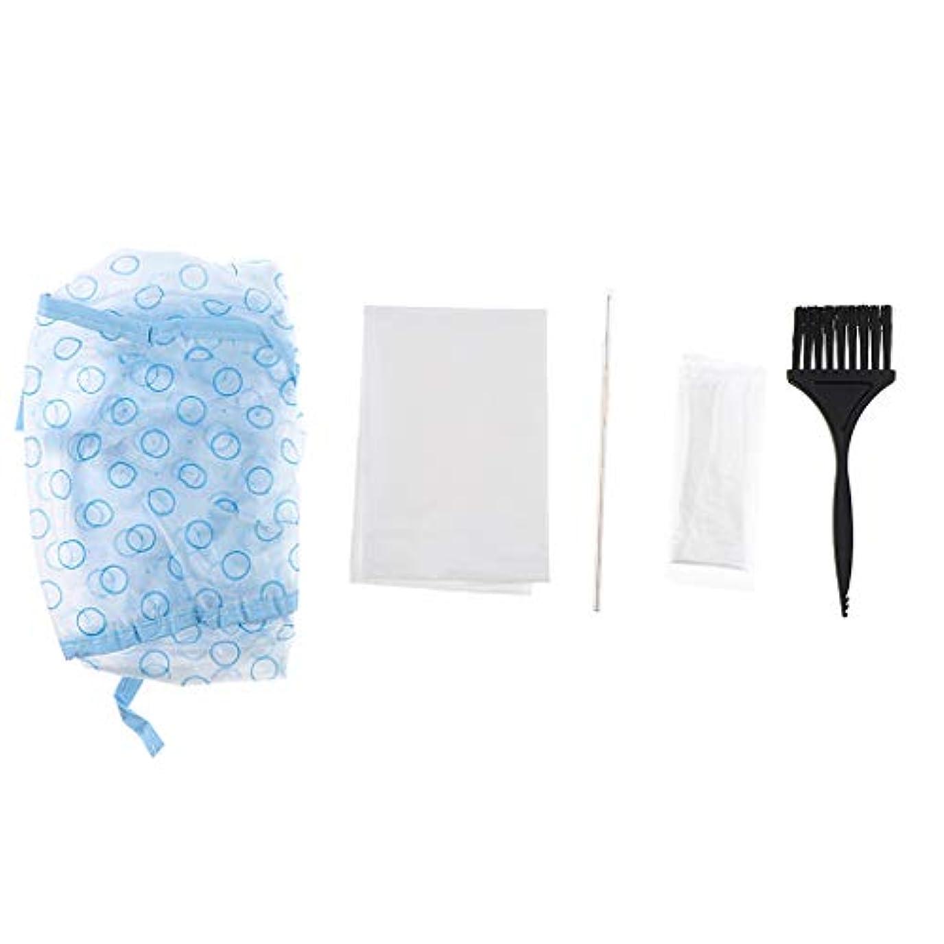 変装した抽象同等の髪染めブラシ キャップ フック針 手袋 ヘア染めツールキット 5個セット