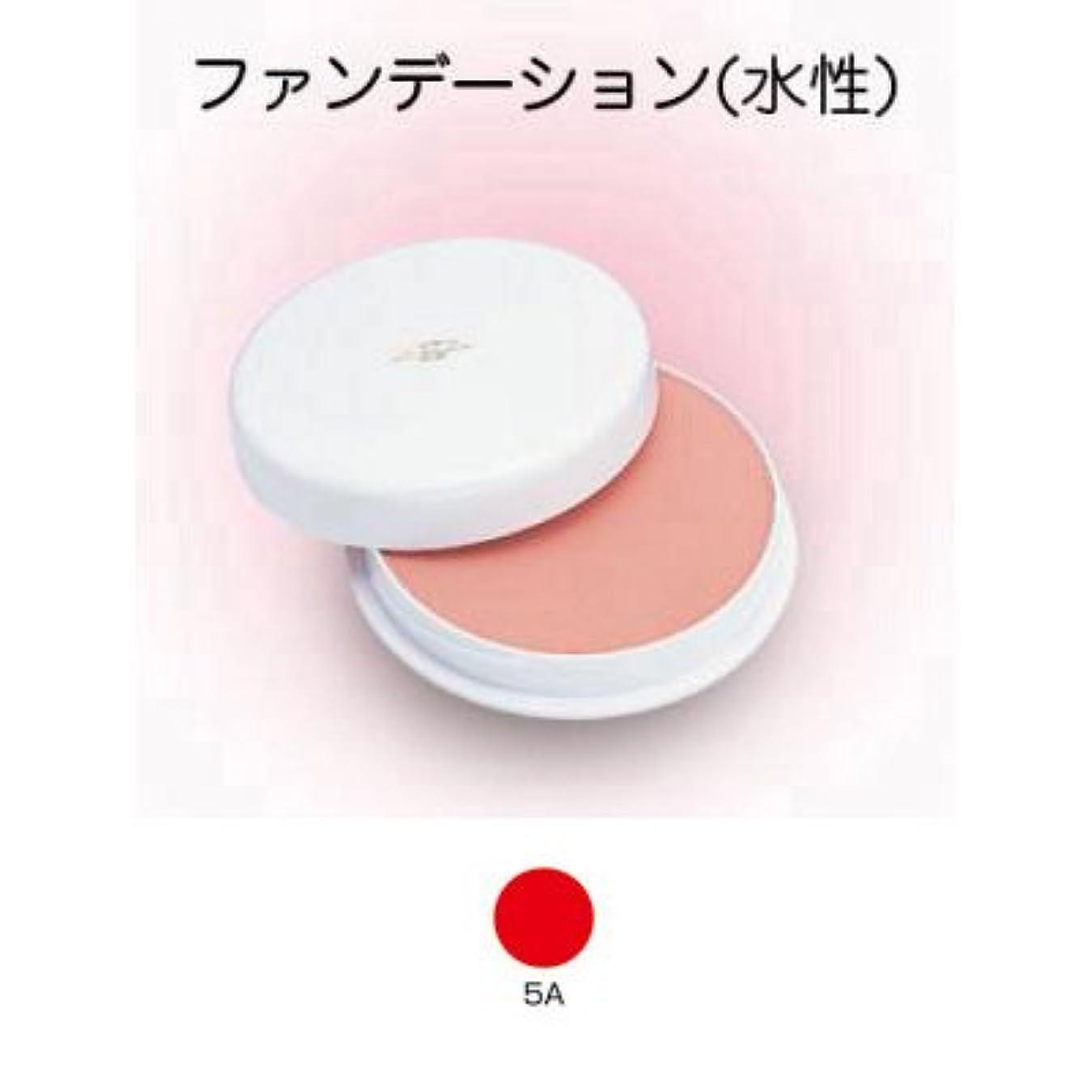 根拠ご意見もフェースケーキ 60g 5A 【三善】