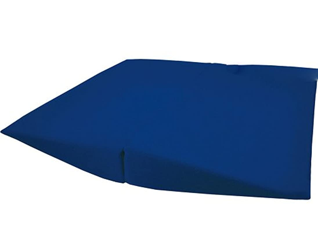 北極圏ぴったり提供する車いすイージークッション ブルー
