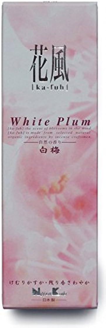規模推測する登録日本香堂 花風 白梅小