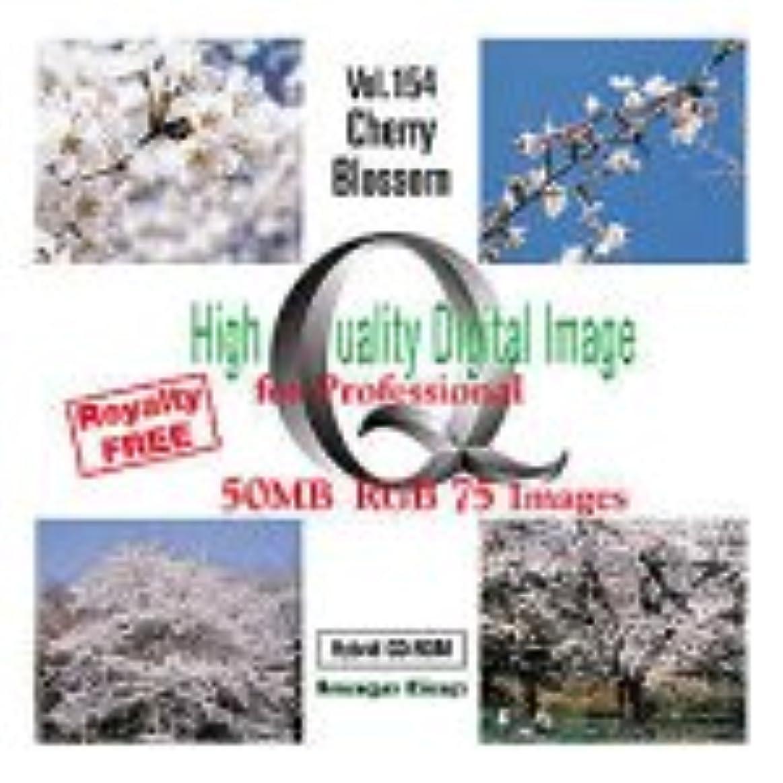 ボーカル抵抗する精査High Quality Digital Image Cherry Blossom