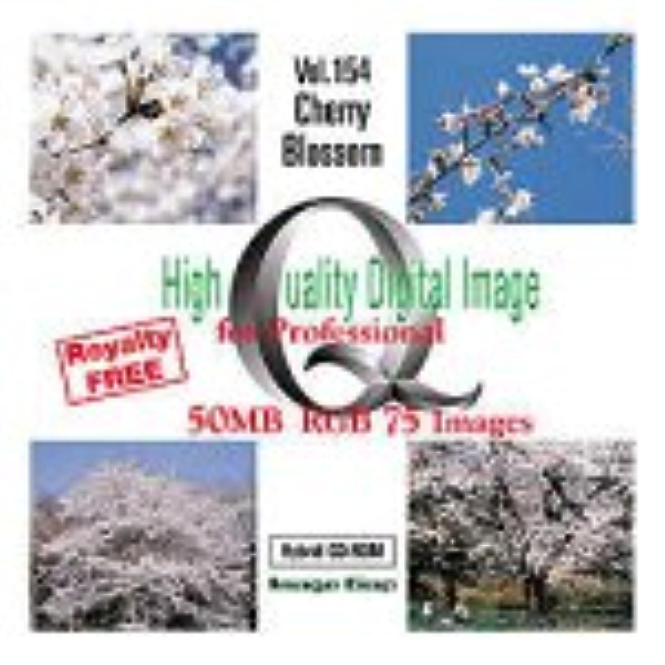 本当に全員コアHigh Quality Digital Image Cherry Blossom