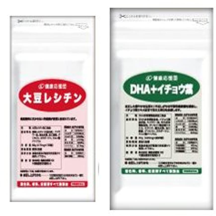 スポーツをする腹痛超高層ビル(お徳用12か月分) 流れサラサラセット 大豆レシチン+(DHA?EPA+イチョウ葉)12袋&12袋セット