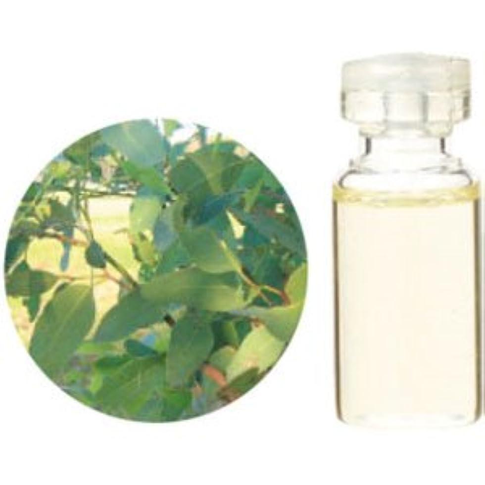 抑制する吸収剤貫入生活の木 ユーカリシュタイゲリアナ 3ml
