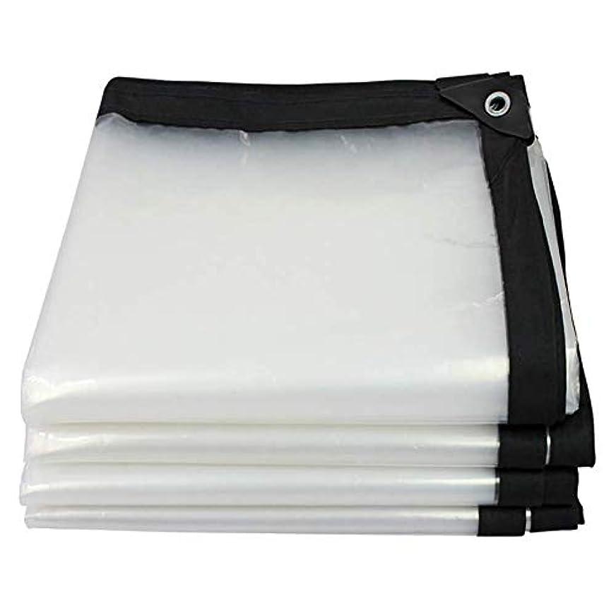 音にぎやか潤滑する19-yiruculture 屋外のテントの透明な防水シートの重い防水防水シートの防水シートのテントの共同陰 (Color : A, サイズ : 2×3m)