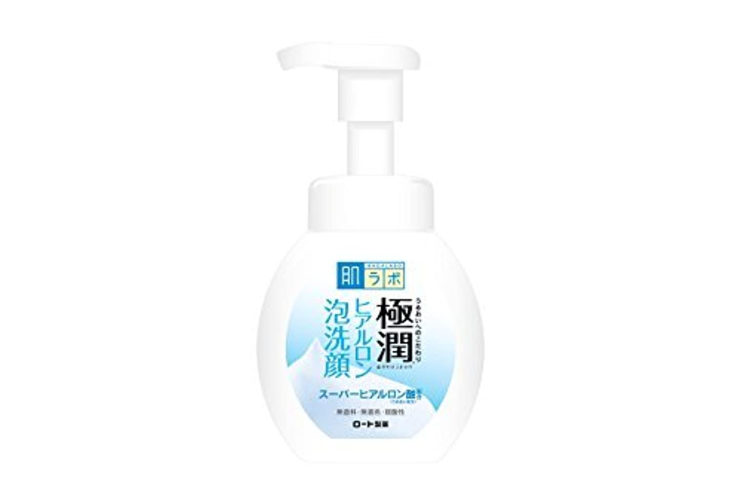偉業ベルベット黒板肌研(ハダラボ) 極潤 ヒアルロン 泡洗顔 160mL