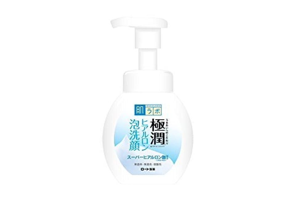 バドミントン行列降臨肌研(ハダラボ) 極潤 ヒアルロン 泡洗顔 160mL