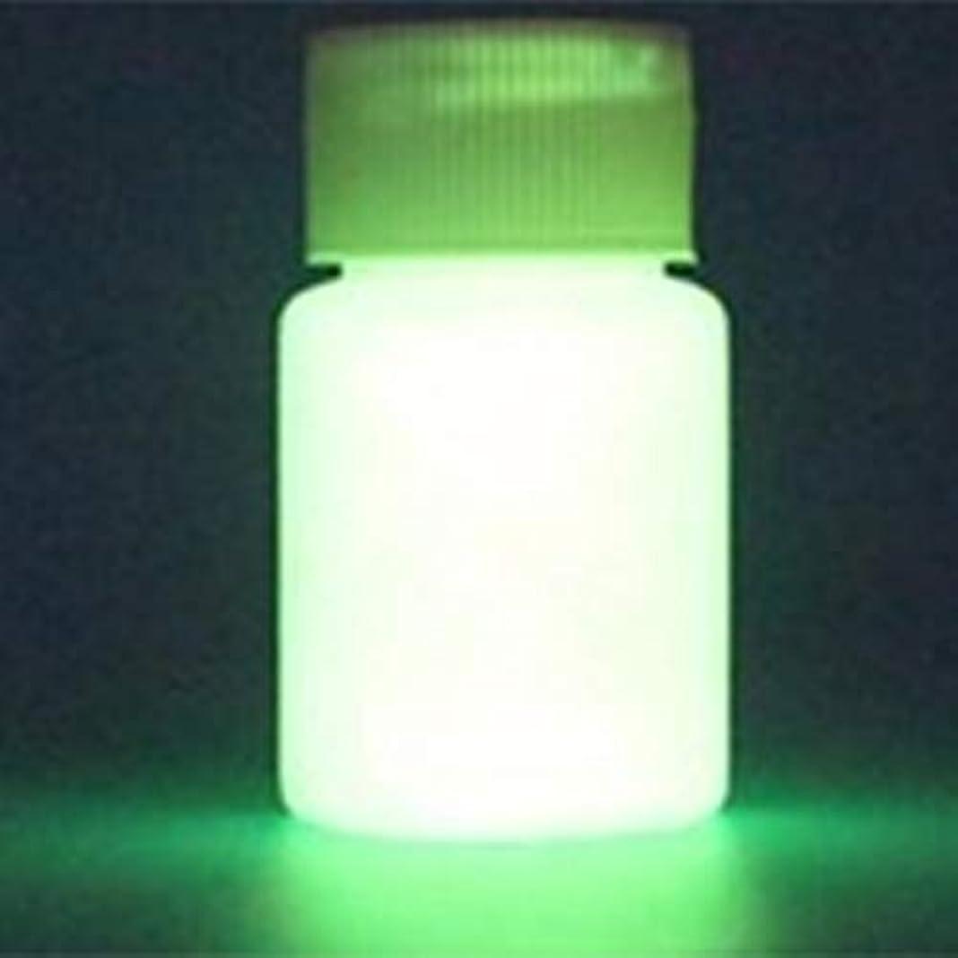 通常熟したせっかちDeeploveUU 光沢のある発光塗料防水長寿命蛍光液体発光粉末発光塗料水ベース