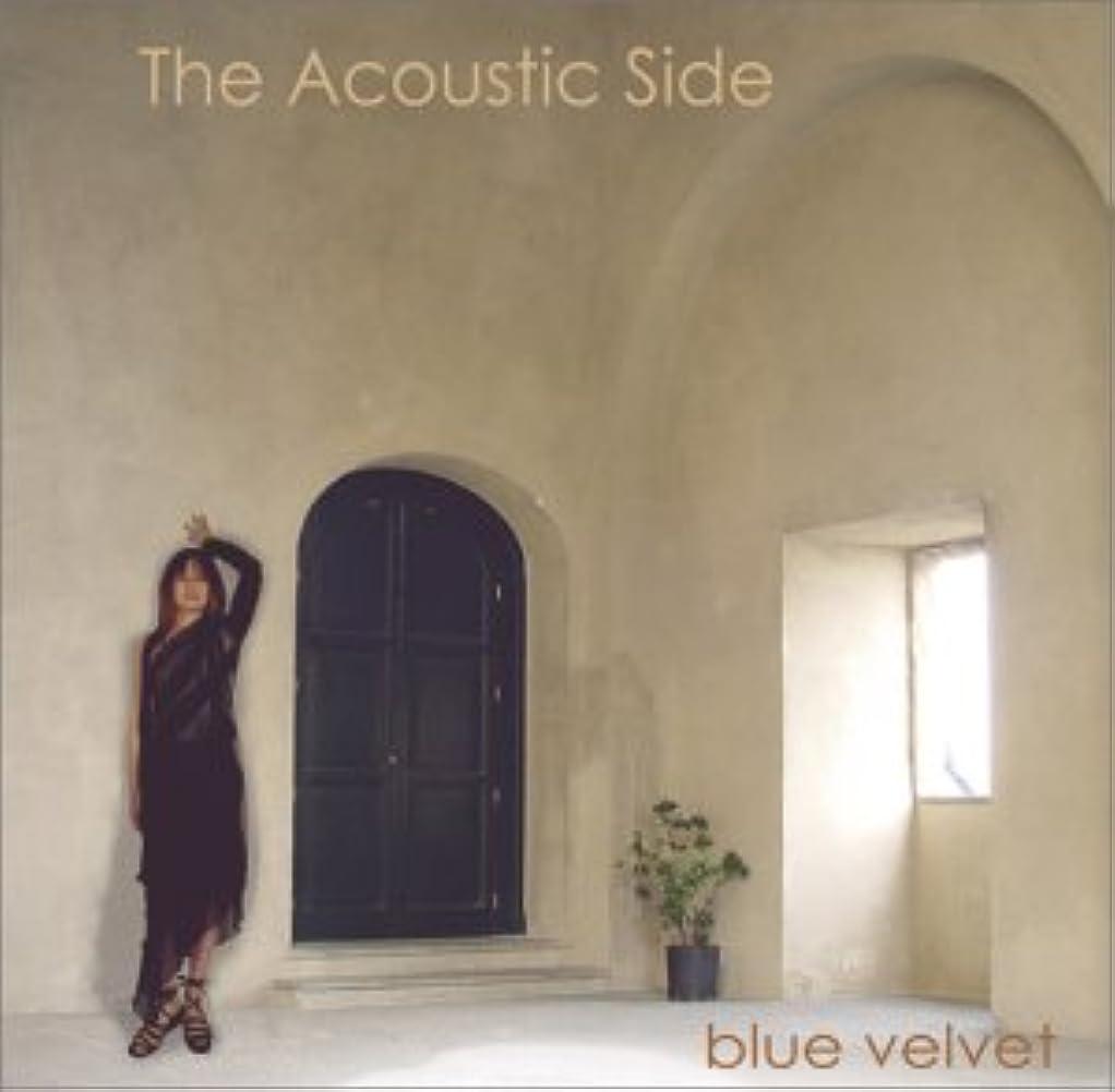 視力熟読する塊The Acoustic Side