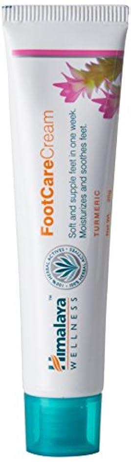 神秘弾薬肉屋お試し価格!!Himalaya Herbals Foot Care Cream かかと柔らかクリーム20g 100%ハーバル アーユルヴェーダ