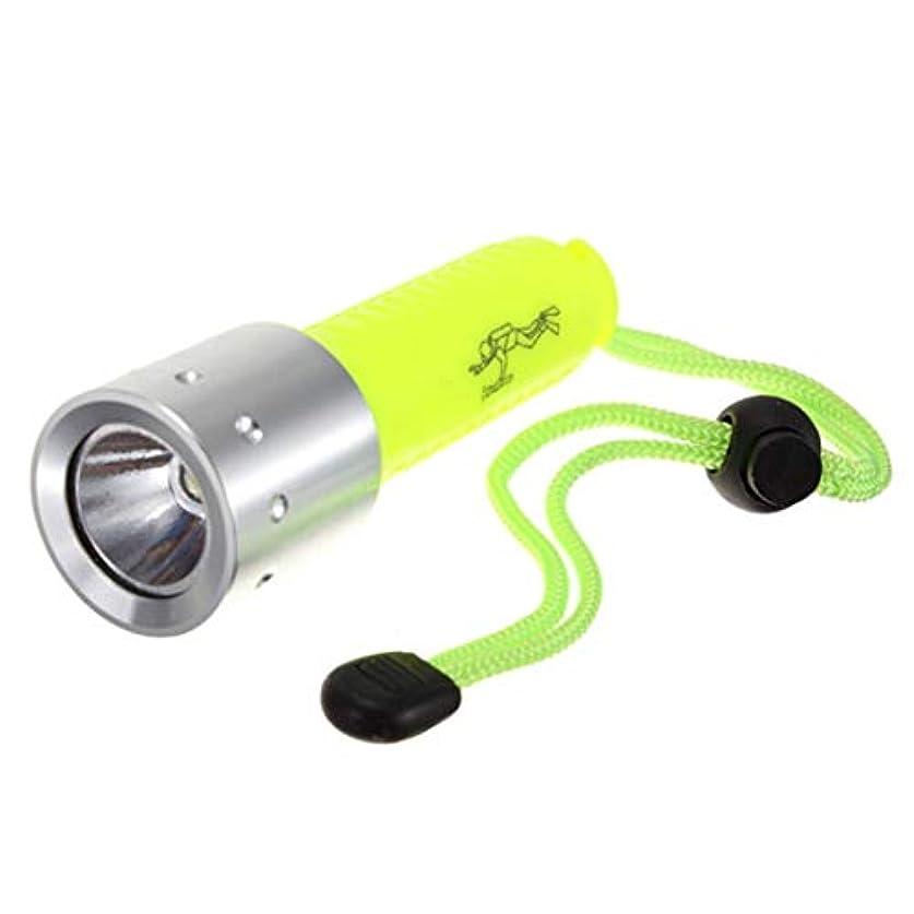 散歩驚いた暗殺するFairCargo LED水中ライト ダイビングライト 防災懐中電灯 緊急照明