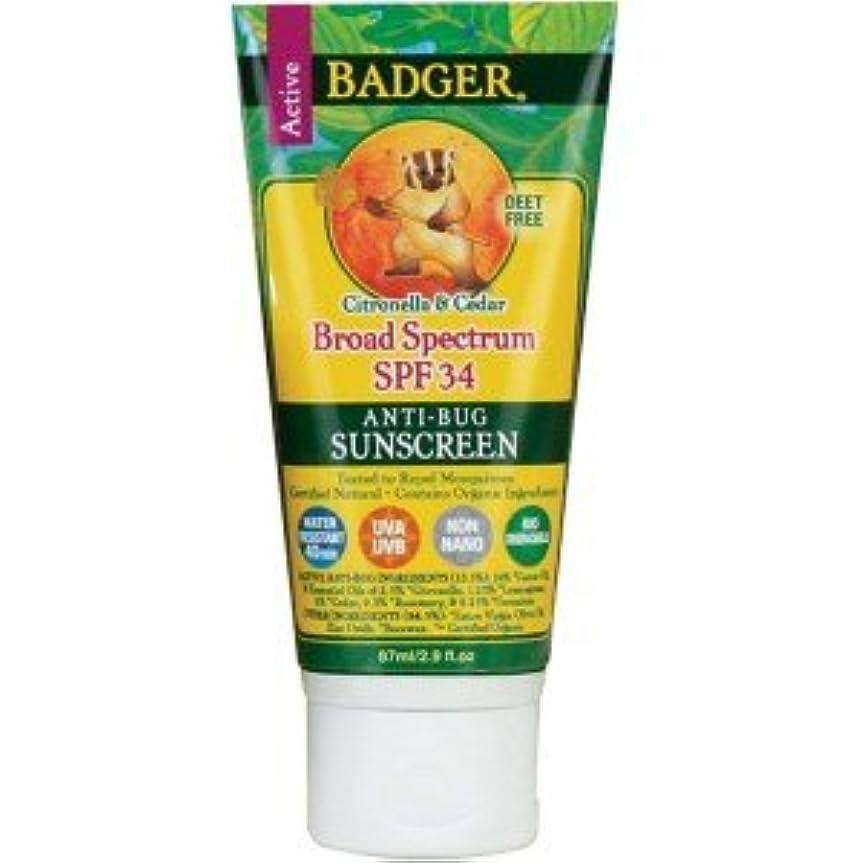 船形元気な一見[海外直送品] バジャー(Badger) サンスクリーン SPF30 87ml (虫よけ)