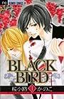 BLACKBIRD 全18巻 (桜小路かのこ)