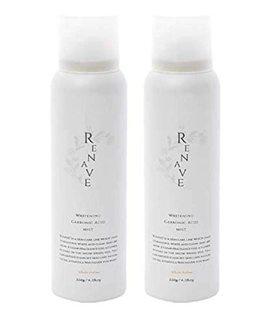 通訳疑い者富RENAVE(リネーヴェ) 高濃度炭酸ミスト 薬用美白化粧水 120ml 2本セット