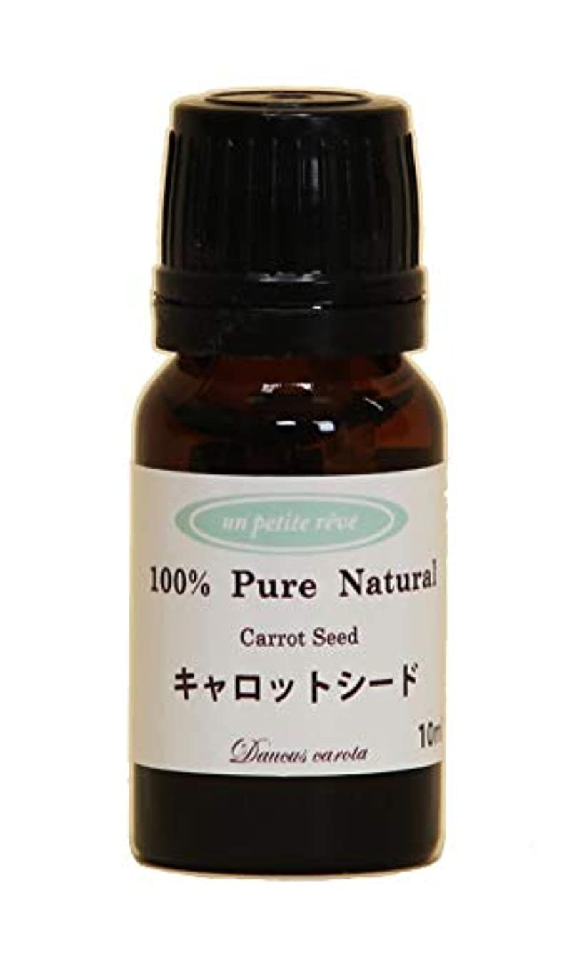端末思い出させる獲物キャロットシード 10ml 100%天然アロマエッセンシャルオイル(精油)