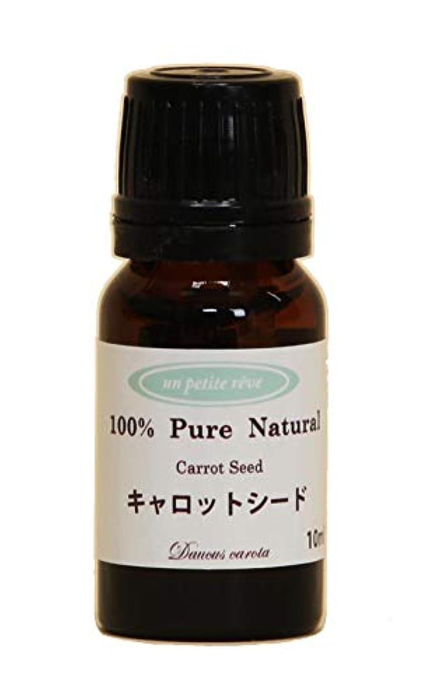 ずんぐりした有料表現キャロットシード 10ml 100%天然アロマエッセンシャルオイル(精油)