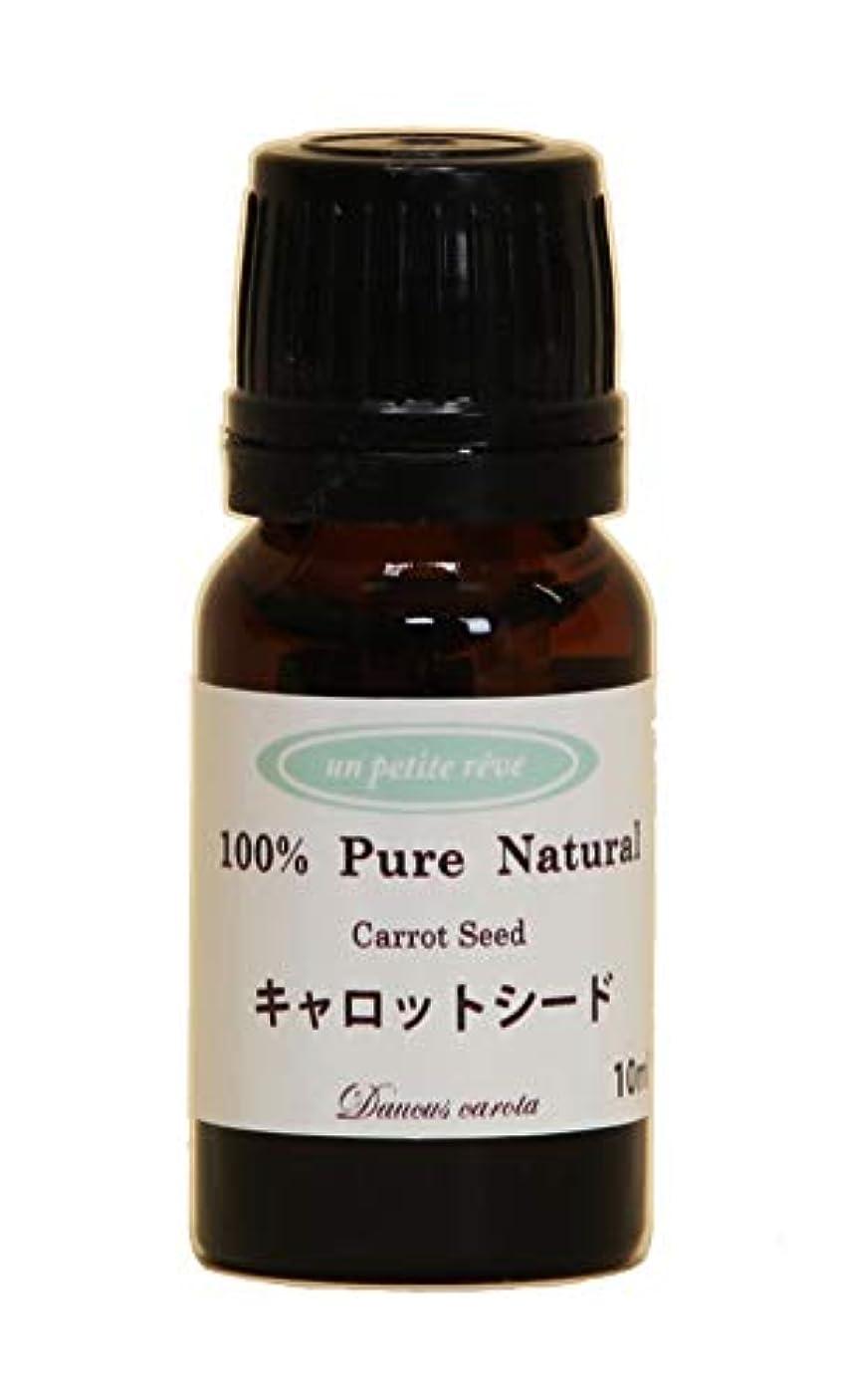 キャロットシード 10ml 100%天然アロマエッセンシャルオイル(精油)