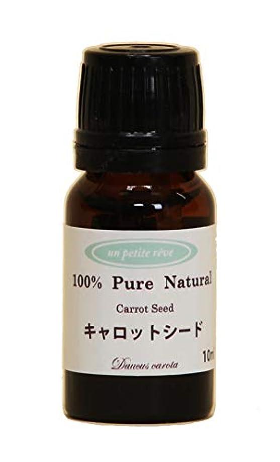 高齢者闘争クラックキャロットシード 10ml 100%天然アロマエッセンシャルオイル(精油)