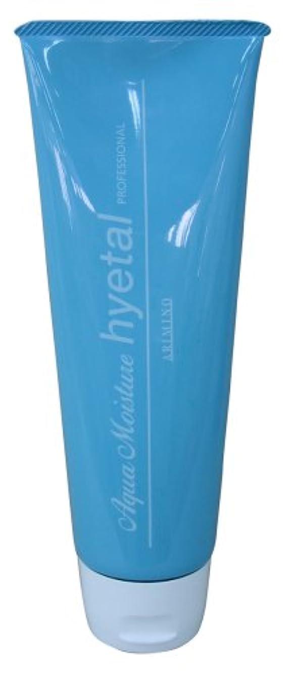 販売員ビジョン三角形アリミノ アクアモイスチュアハイタル(洗い流さないヘアトリートメント)230g
