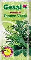 20リットルの緑の総植物のための特別な土地