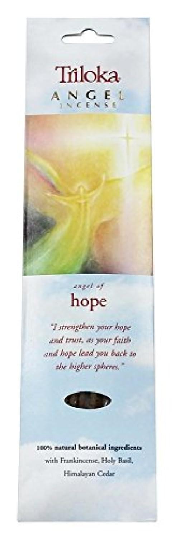 ルーフ検査素朴なTriloka - 希望の天使の香の天使 - 10棒