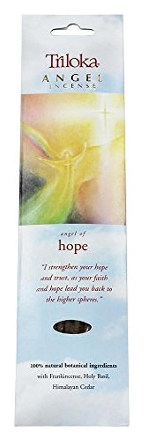 曇ったそれにもかかわらず満足Triloka - 希望の天使の香の天使 - 10棒