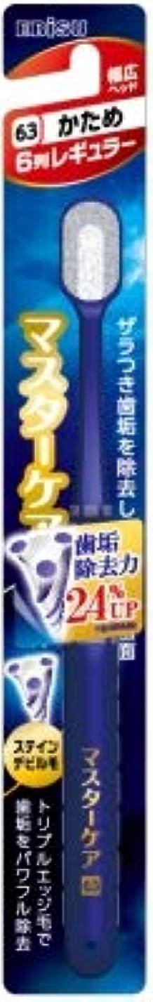 レパートリー思いやりのある戸口【まとめ買い】マスターケアハブラシ?6列レギュラー かため ×6個