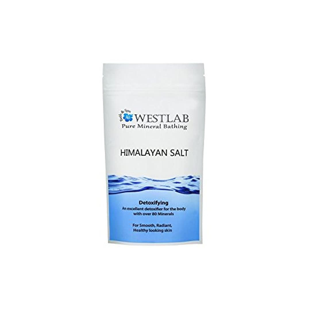 消費シプリー急ぐWestlab Himalayan Salt 1kg - ヒマラヤ塩の1キロ [並行輸入品]