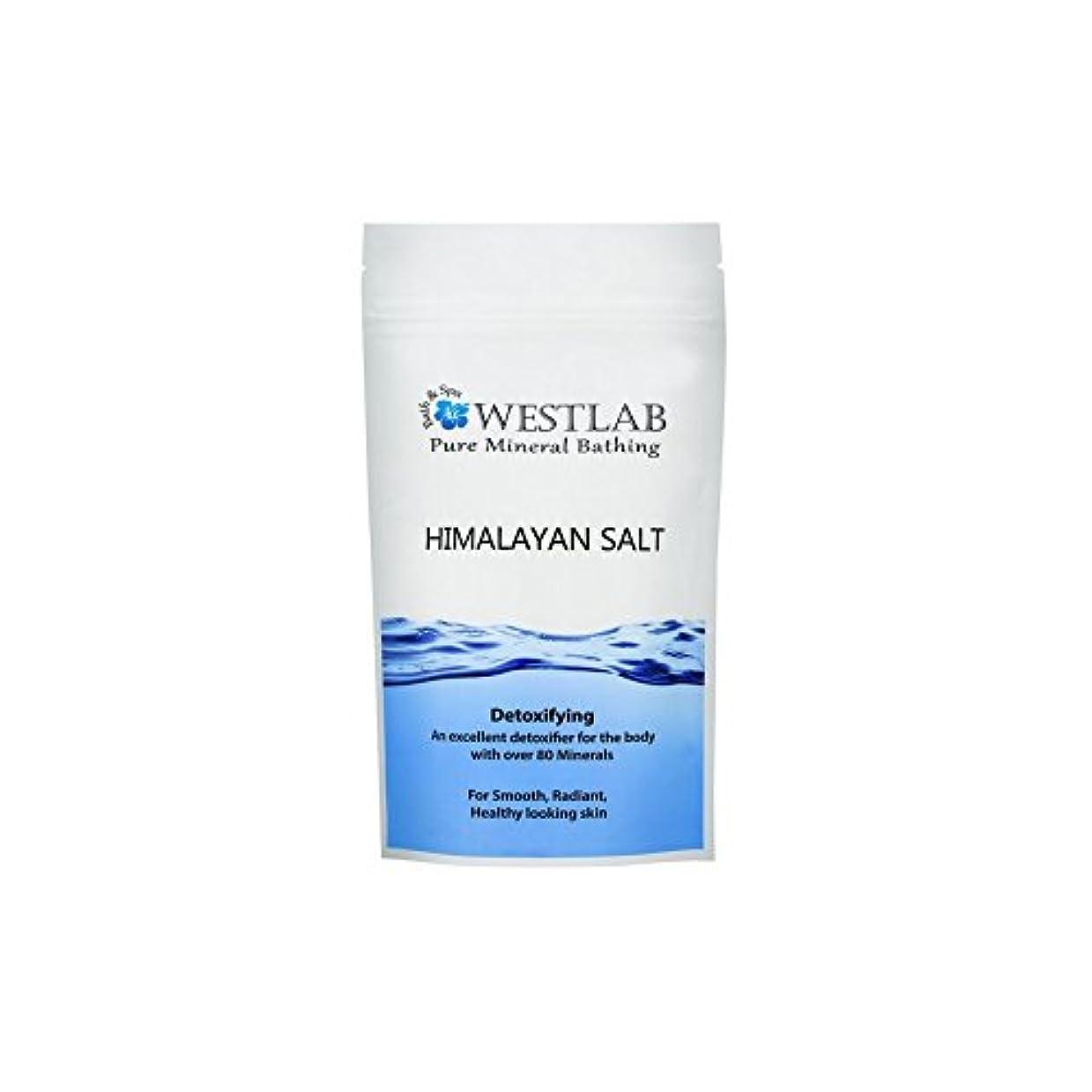一人でレース廃棄するヒマラヤ塩の1キロ x2 - Westlab Himalayan Salt 1kg (Pack of 2) [並行輸入品]